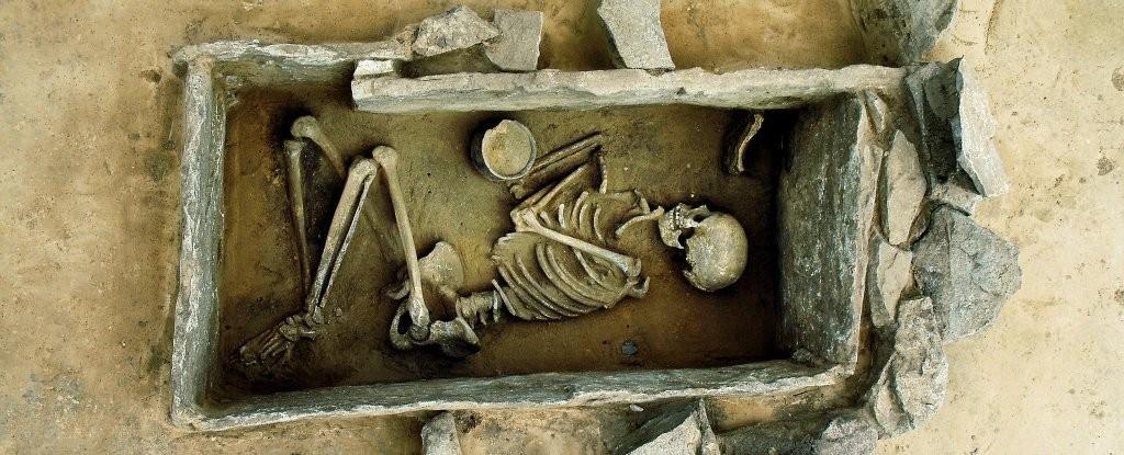 Estudo de esqueletos antigos mostra como a agricultura alterou o corpo dos europeus