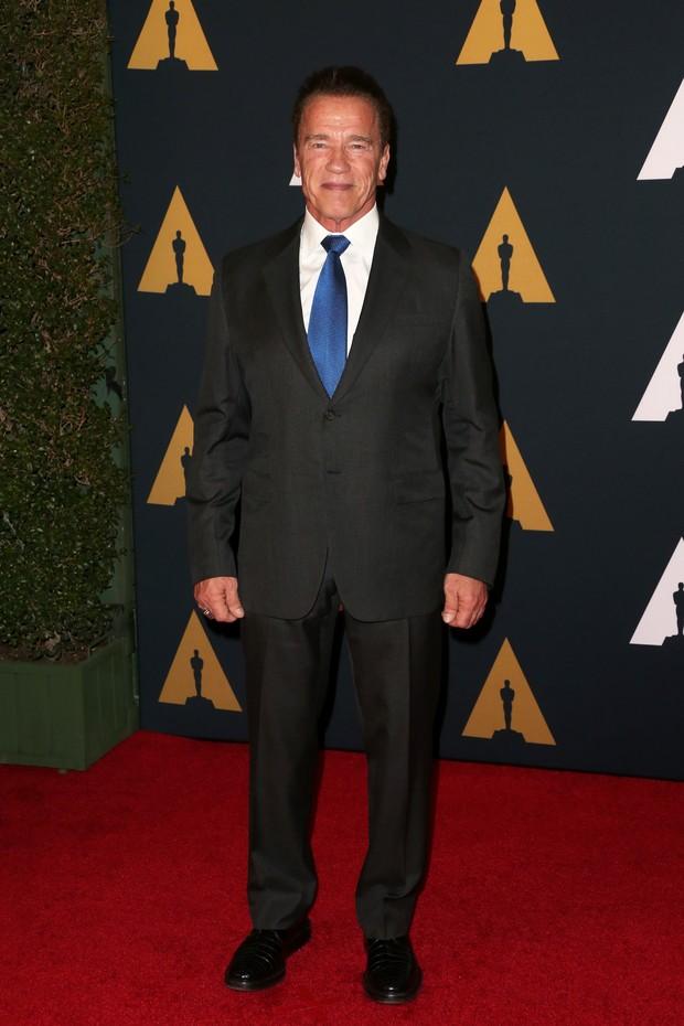 Arnold Schwarzenegger (Foto: Getty Image)
