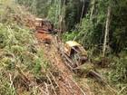 Agrônomos são autuados por laudos falsos de desmatamento em MT