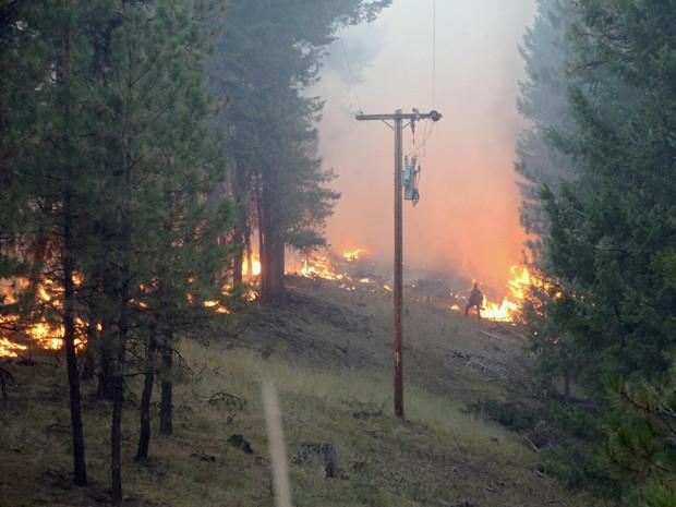 Bombeiro observa as chamas de incêndio no Canyon Creek Complex, em Oregon, na segunda-feira (17) (Foto: Reuters/Gert Zoutendijk/Oregon State Fire Marshal/Handout)