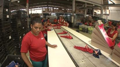 Conheça o funcionamento uma fábrica de brinquedos situada em Lauro de Freitas