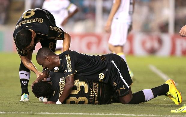 Elias comemora gol do Botafogo contra o Santos (Foto: Leandro Martins / Agencia estado)