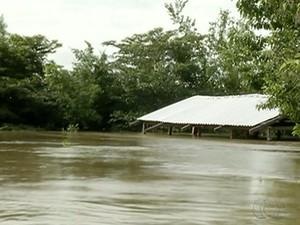 Casa ficou submersa depois de cheia no rio Tocantins (Foto: Reprodução/TV Anhanguera)