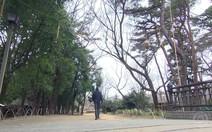 Parque próximo a Tóquio