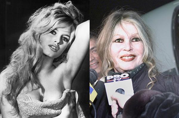 Brigitte Bardot (Foto: Reprodução / Getty Images)