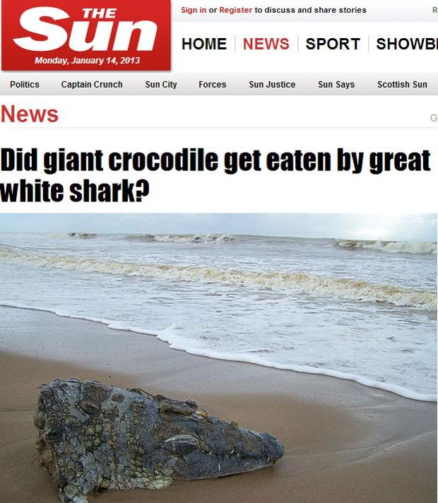 Forma como crocodilo morreu não está clara' (Foto: Reprodução/'The Sun')