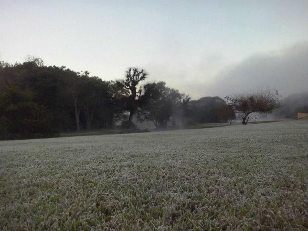 Parque Tingui, em Curitiba, também amanheceu tomado pela geada  (Foto: Edi Carlos / RPC )