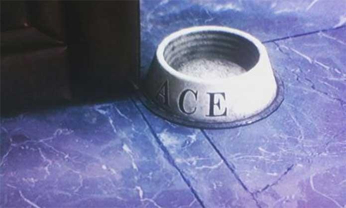Alfred lembrou de alimentar Ace em Arkham Knight (Foto: Reprodução/Rocksteady)