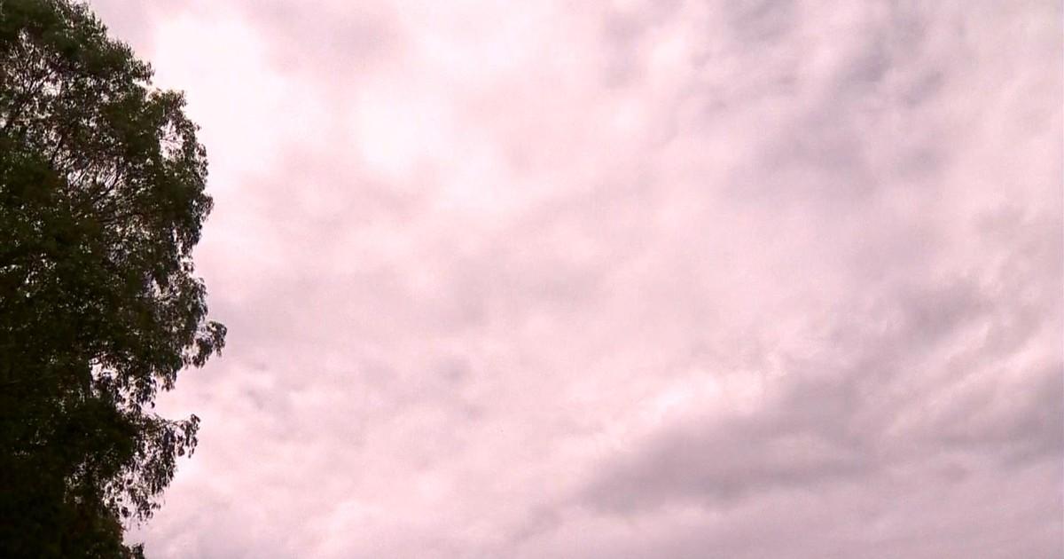 Baixo índice pluviométrico afeta produção de flores em Barbacena ... - Globo.com