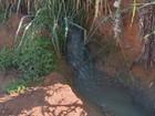 Vazamento de esgoto preocupa moradores em bairro de Campinas