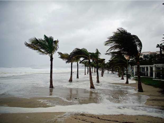 Vento de furacão sacode palmeiras na orla de Los Cabos. (Foto: Victor R. Caivano / AP Photo)
