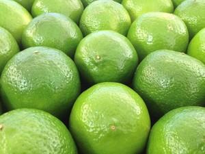 Limão taiti (Foto: Reprodução)