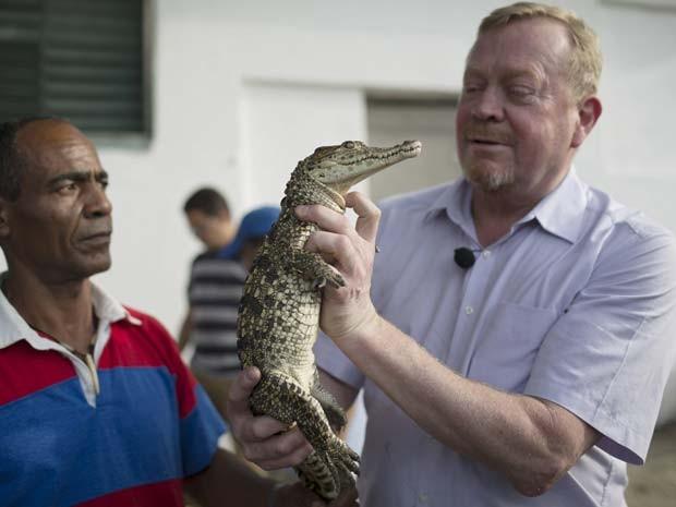 Filhotes de crocodilo chegam a Cuba da Suécia em esforço de conservação