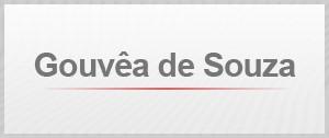 Gouvea de Souza (Foto: G1)