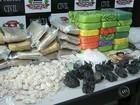Polícia de Bauru apreende quase 40 quilos de droga após investigação