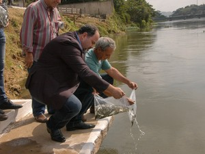 Mais de 20 mil peixes foram soltos no rio Paraíba do Sul. (Foto: Tuca Ramos/ Divulgação PMBM)