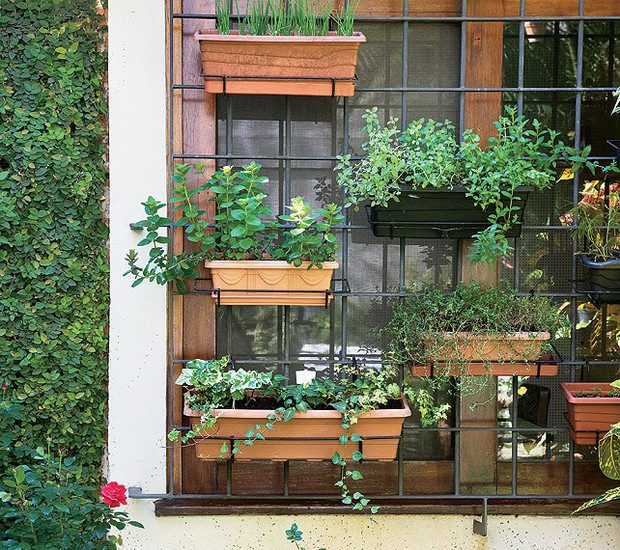 A moradora aproveitou a estrutura de ferro da janela para instalar as floreiras de plástico com hortelã, tomilho, cebolinha e outros temperos, que recebem o sol da manhã (Foto: Arquivo/Casa e Jardim)