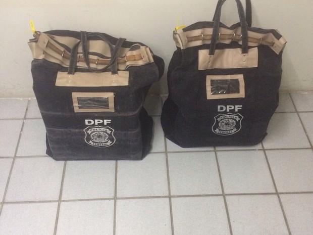 Documentos foram apreendidos em Brejão na operação Catilinárias (Foto: Divulgação/Polícia Federal)