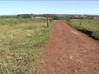 Região norte de Londrina terá um novo cemitério público em dois anos