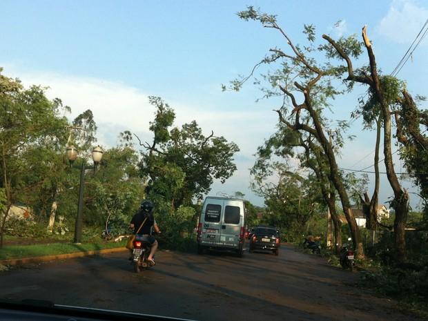Vários galhos de árvores ficaram caídos em rua de Marechal Cândido Rondon  (Foto: Vanessa Mendes)