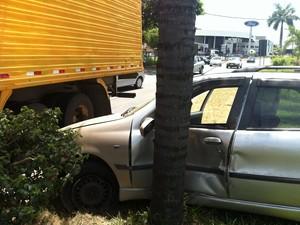 Depois da colisão com o caminhão o carro bateu a lateral em uma árvore. (Foto: Patrícia Belo \ G1)