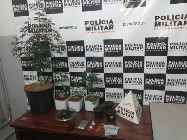 Maconha apreendida pela PM em Divinópolis (Foto: Policia Militar/ Divulgação)