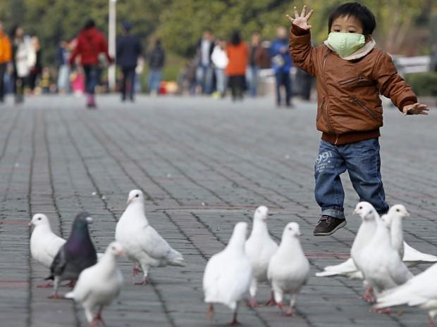 Menino brinca com pombas em uma praça em Xangai, neste sábado (6) (Foto: Reuters)