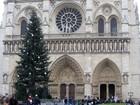 Governo russo patrocina árvore de Natal da Notre Dame de Paris