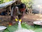 Feiras indígenas promovem a preservação de sementes e mudas