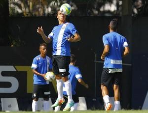Leandro Damião Santos (Foto: Ricardo Saibun/Divulgação Santos FC)