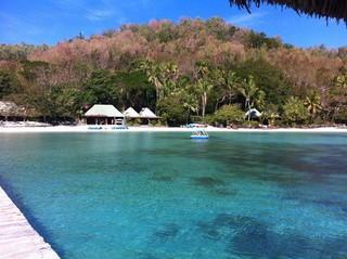 Turtle Island (Foto: Reprodução/Facebook Turtle Island)