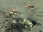 Balão cai sobre empresa e pega fogo (Reprodução/ TV TEM)