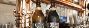 Entenda o que são as refrescantes e saborosas cervejas Session (Hans Georg)
