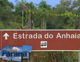 Estrada do Anhaia (Foto: Reprodução)