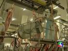 Missão dos EUA vistoria frigoríficos de MS para importar carne in natura