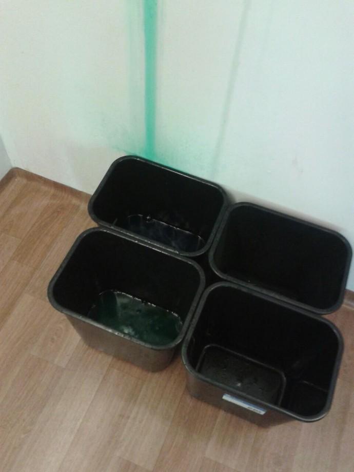 Baldes foram colocados para conter vazamento no que seria o escritório da delegação da Austrália na Vila Olímpica inaugurada neste domingo (Foto: GloboEsporte.com)