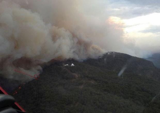 Incêndio atinge florestas na Nova Gales do Sul (Foto: AFP)
