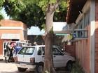 Julgamento de menores suspeitos de matar delator de estupro é retomado
