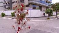 Árvore de Natal é montada em buraco em rua de Cabo Frio