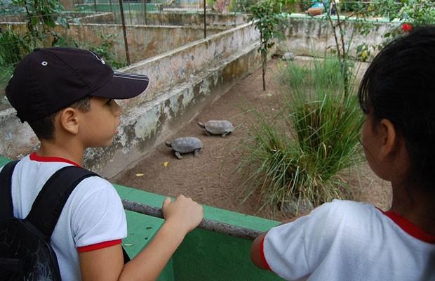 Colônia de férias do Parque Dois Irmãos está com inscrições abertas. (Foto: Vanessa Bahé/ G1)