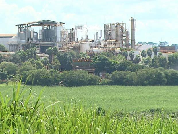 Usina em Batatais moeu 3,5 milhões de toneladas de cana na safra passada e pretende subir valor em 10% este ano (Foto: Alexandre Sá/EPTV)