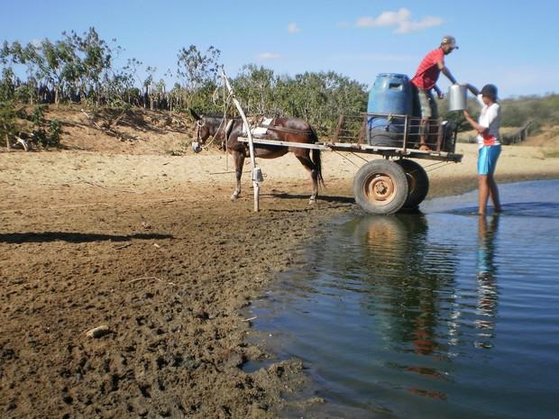Seca no Piauí agrava situação de dificuldade pela falta de água (Foto: Gustavo Almeida/G1)