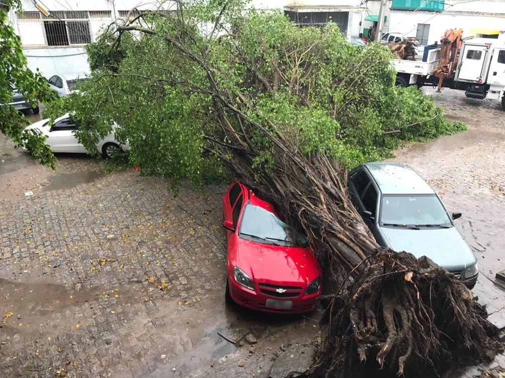 João Pessoa (PB) registra 75 mm de chuvas em 12 horas, diz Defesa Civil | PB / Paraíba | G1