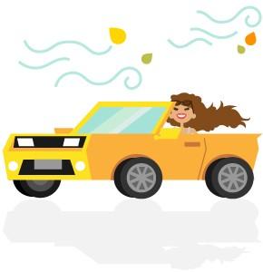 'Driving passion' foi o nome dado para os consumidores que são apaixonados por carros (Foto: G1)
