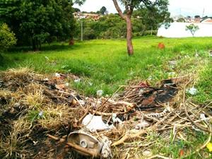 Terrenos baldios e com lixo servem de abrigo para os animais, dizem moradores (Foto: Cláudio Nascimento / TV TEM)