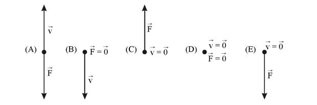 Primeira Lei de Newton 1 (Foto: Reprodução)