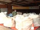 Campanha orienta sobre descarte correto de embalagens de agrotóxicos