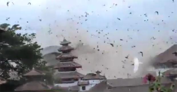 Casal de turistas filma revoada de pássaros em vídeo impressionante durante terremoto no Nepal