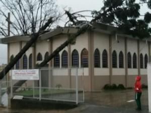 Churra derrubou árvore em igreja de Jundiaí (Foto: Valdemar Roque da Silva/Arquivo pessoal)