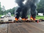 Sem poder trabalhar, funcionários da Araupel bloqueiam rodovia no Paraná